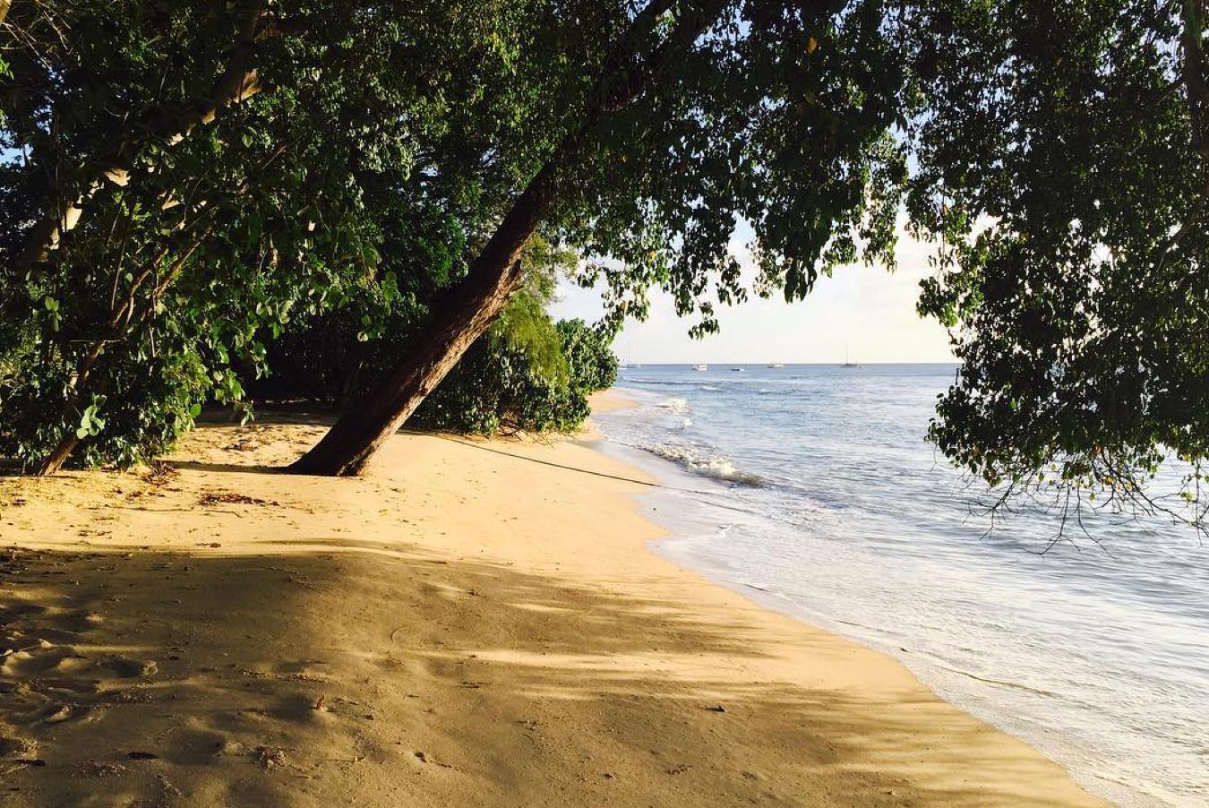 Enclosed Barbados beach